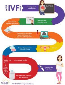 IVF guide